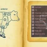 Esquema e Nomes das Peças da Carne De Vaca