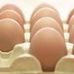 Segredos dos Ovos