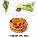 Alimentos de outono: Funcho/Erva-doce