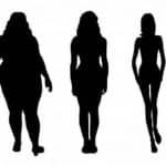 A alimentação e o nosso corpo