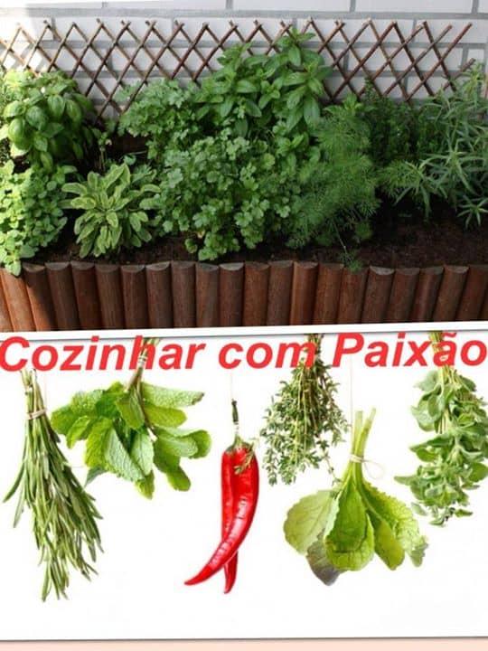Como Secar ervas aromáticas